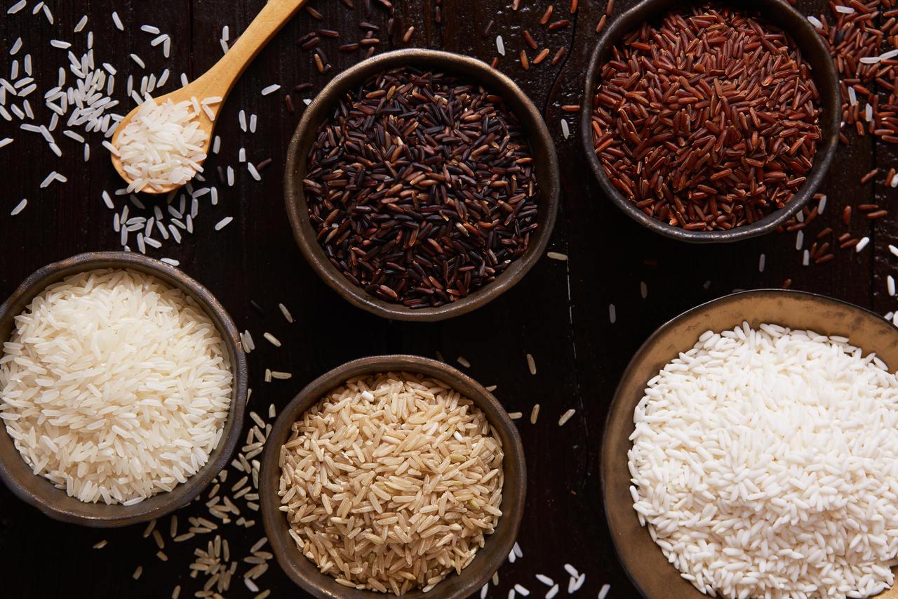 rodzaje i gatunki ryżu